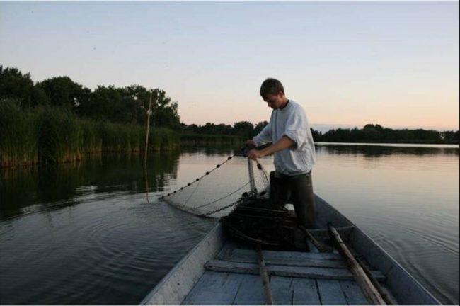 Brandenburger Fischereitag 2015
